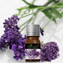 Cách phân biệt thật giả tinh dầu oải hương lavender pháp