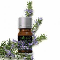 Tinh dầu hương thảo giá rẻ sỉ lít buôn tại tphcm